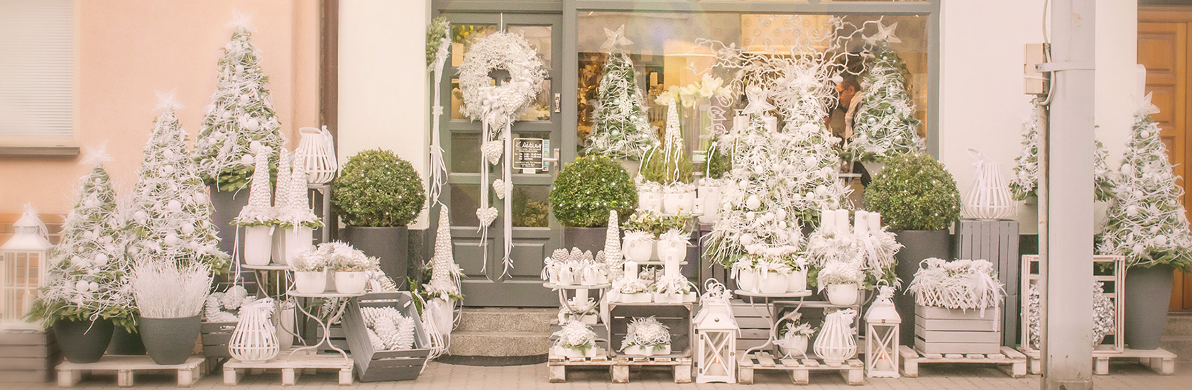 Kolekce Luxusni Vanoce V Brne 2017 Kvetiny Petr Matuska Brno